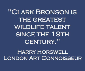 Clark Bronson is the greatest wildlife talent since the 19th century. Harry Horswell, London Art Connoisseur